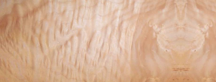 PC Quilted Maple